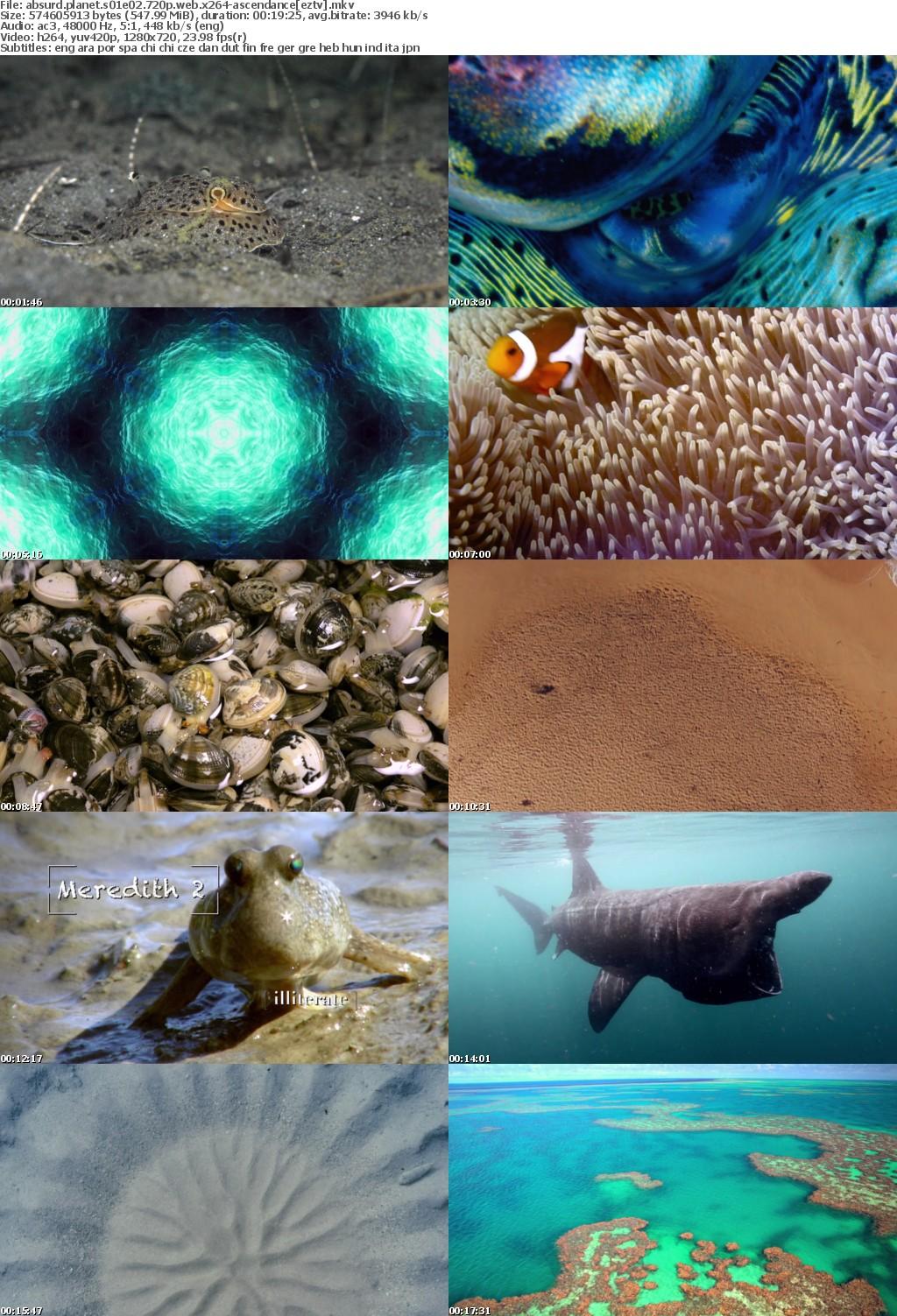 Absurd Planet S01E02 720p WEB x264-ASCENDANCE