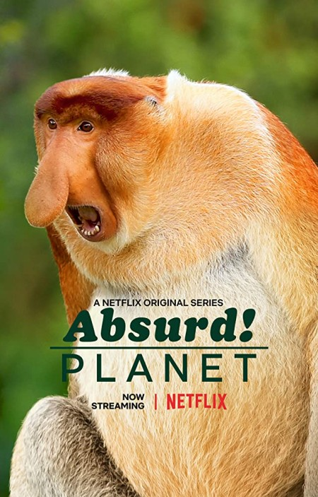 Absurd Planet S01E02 480p x264-mSD
