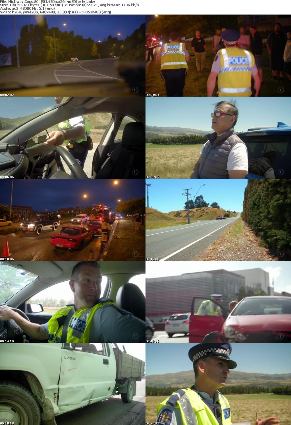 Highway Cops S04E01 480p x264-mSD