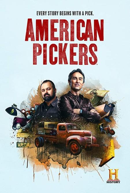 American Pickers S19E11 Texas Treasures 480p x264-mSD