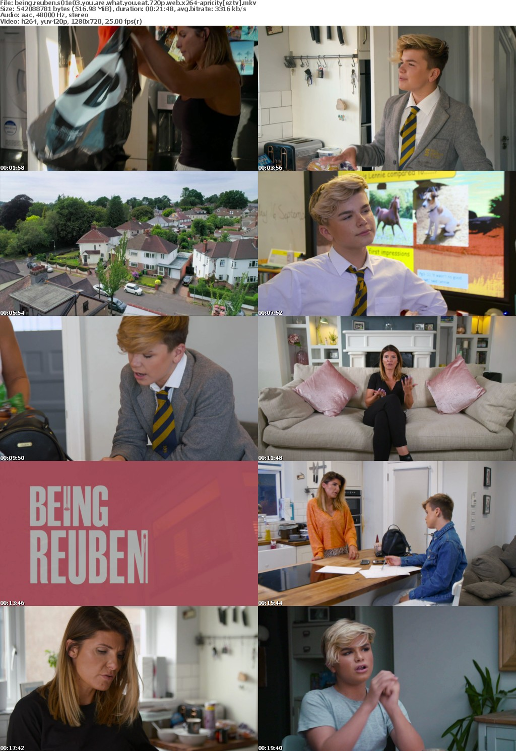 Being Reuben S01E03 You Are What You Eat 720p WEB x264-APRiCiTY