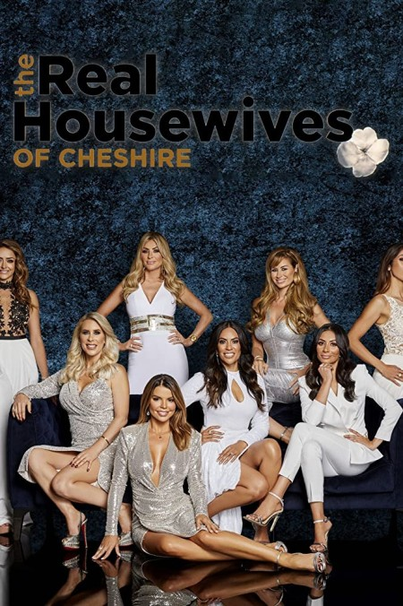 The Real Housewives of Cheshire S11E03 480p x264-mSD