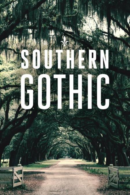 Southern Gothic S01E04 Creek Runs Red 720p ID WEBRip AAC2 0 x264-BOOP