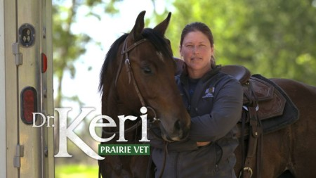 Dr Keri Prairie Vet S03E06 A Tale Of Two Towns 720p WEBRip x264-CAFFEiNE