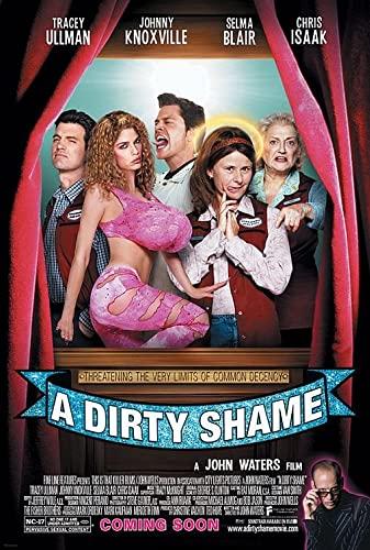 A Dirty Shame 2004 [720p] [WEBRip] YIFY