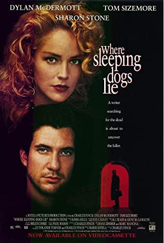 Where Sleeping Dogs Lie 2020 720p WEBRip X264 AC3-EVO