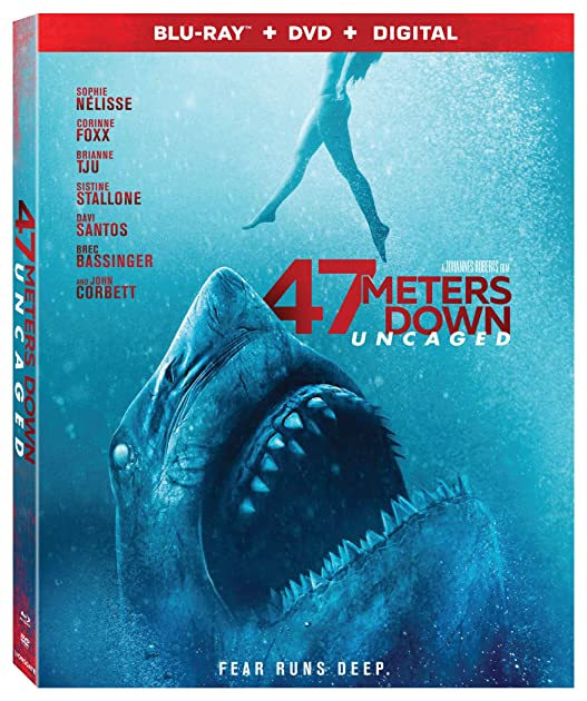 47 Meters Down Uncaged (2019) 1080p Bluray x264 Dual Audio Hindi English DT ...