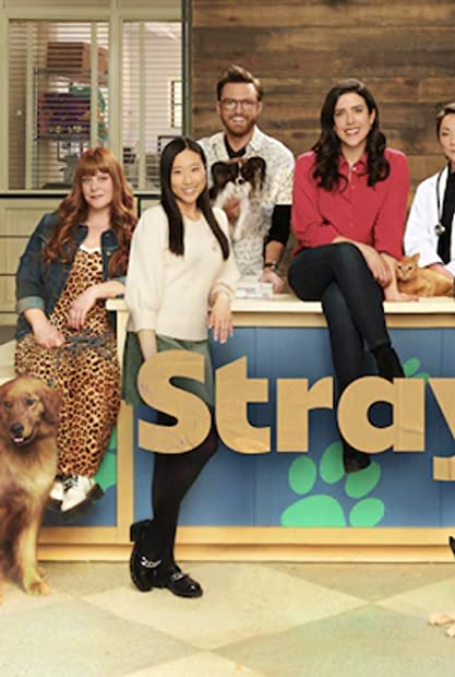 Strays S01E06 WEBRip x264-GALAXY